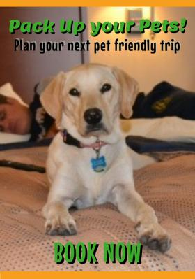 preferred provider%20of%20pet%20friendly%20lodging
