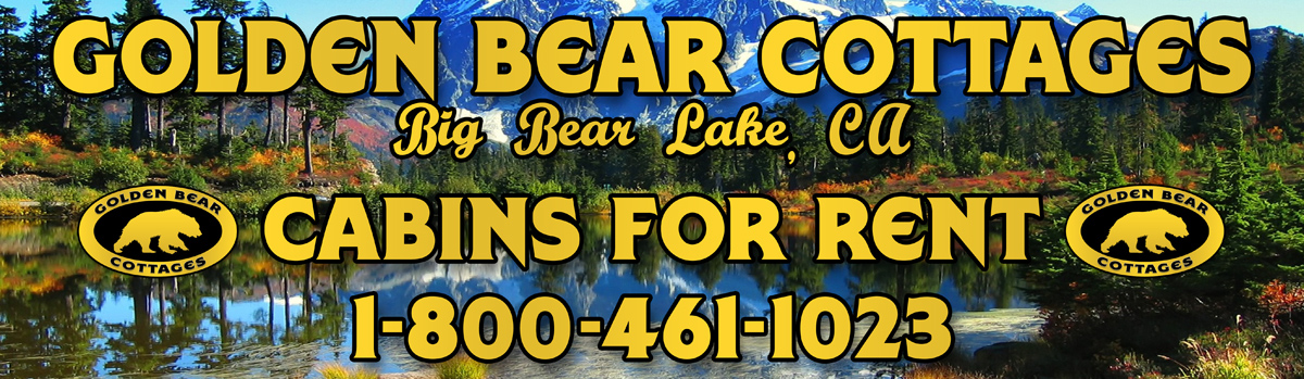 big%20bear%20cabin%20rentals