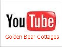 you%20tube%20big%20bear%20video