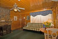 Larger Jacuzzi studio cottage - kitchen and fireplace. #14,18 Picture 18