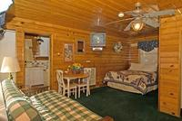 Larger Jacuzzi studio cottage - kitchen and fireplace. #14,18 Picture 16